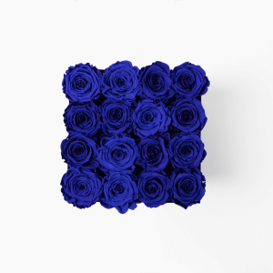 Infinity Roses Royal Blue Roses