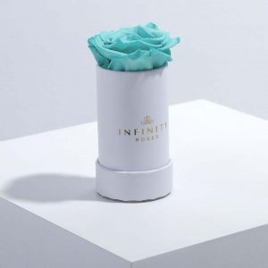 Infinity Roses Tiffany Blue Mini Box
