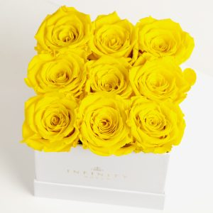 9 of our yellow roses
